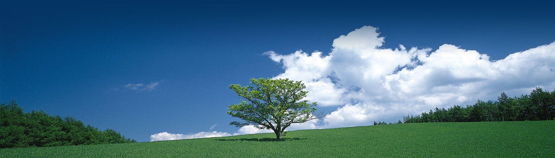 Respetamos<br/>el medio ambiente